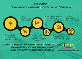 seagate firmware case study 80 gb no interface age